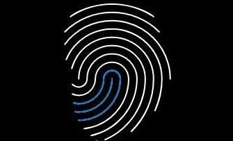 How do I setup fingerprint login with Windows Hello